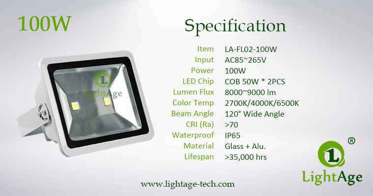 LA-FL02-100W 100W COB LED Flood Light Specification