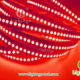 LightAge LED Strip 3528-240-10mm 06