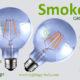 G80 filament LED Globe Smoked 2w4w